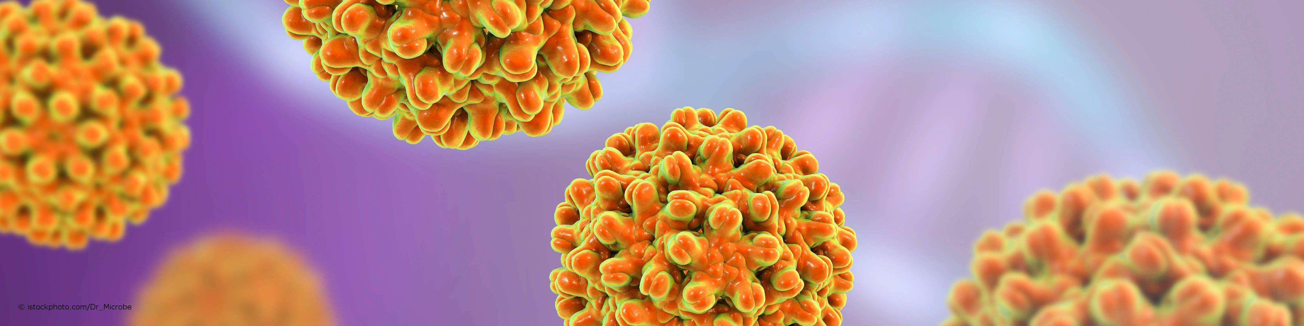 Das Hepatitis B-Virus kommt weltweit vor. Eine Infektion ist meldepflichtig.