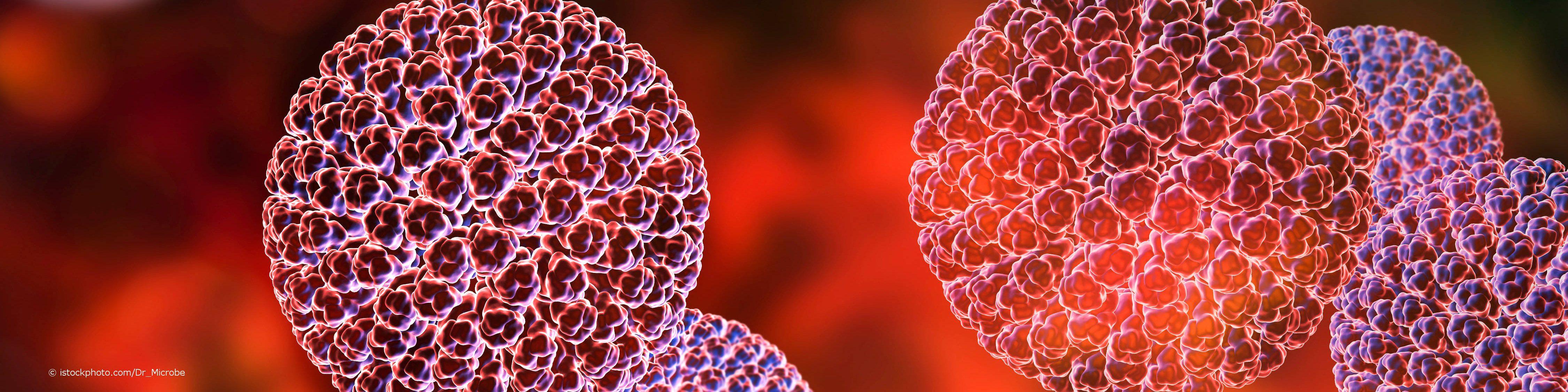 Rotaviren haben keine Hülle und sind dadurch für gängige Desinfektionsmittel schwer angreifbar.
