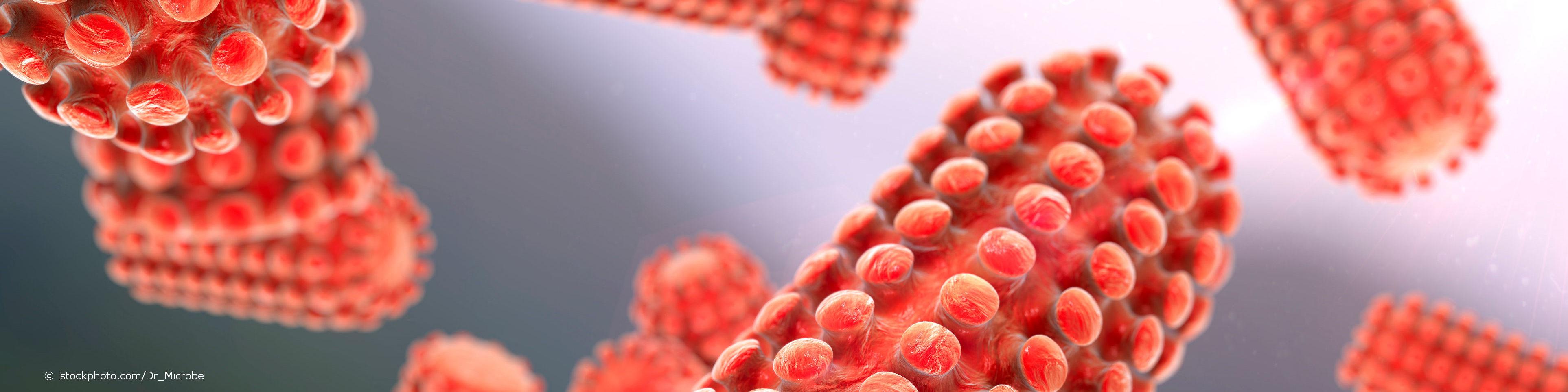 Das Rabiesvirus ist der Erreger der Tollwut.