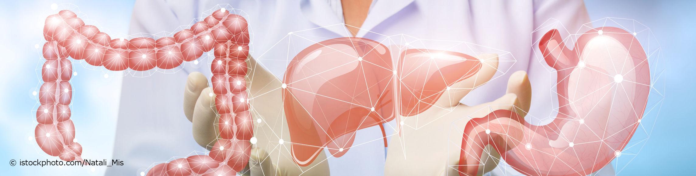 Bei docinsider registrierter Facharzt für Innere Medizin und Gastroenterologie zeigt 3-D-Modell von Magen, Darm und Leber.